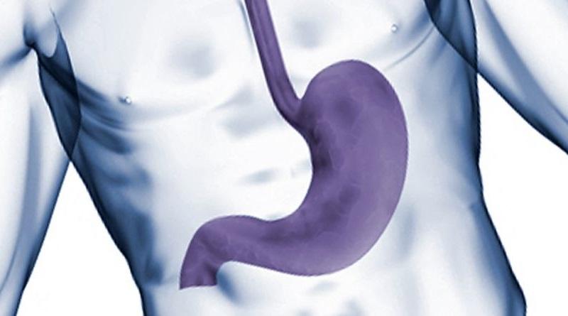 Чир на желуцу и дванаестопалачном цријеву (ulcus ventriculi et duodeni)