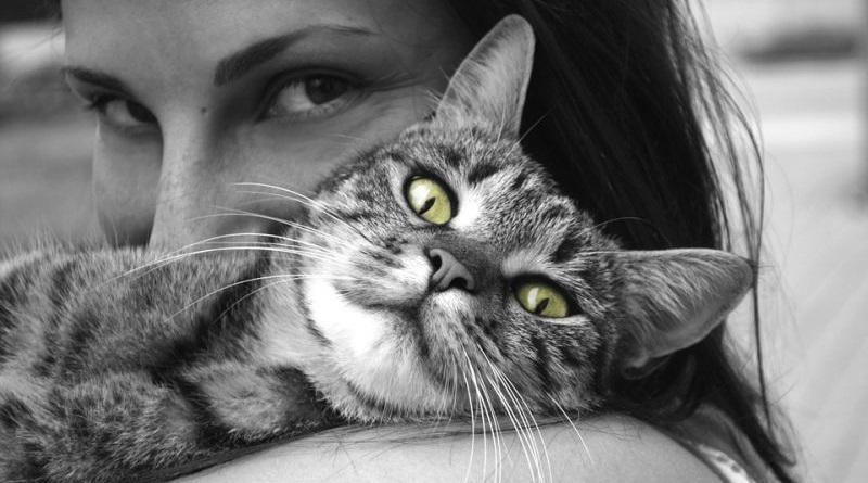 Љековити учинак животиња на здравље људи